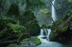 Elowah Falls (sdosick) Tags: water waterfall oregon forest green long exposure middle earth earthporn landscape columbia river gorge rocks color moss pacific northwest portland pdx pnw