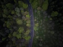 Road (akarakoc) Tags: dji mavic pro forrest road tree green aerial drone