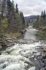 DSC08686 (igor_shumega) Tags: природа пейзаж река рафтинг весна вода водопад лес дерево