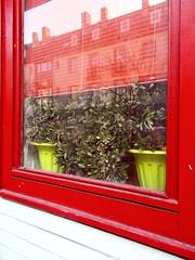 Grüne Aussicht (h.d.lange) Tags: braunschweig restaurant fenster blumentopf pflanzentopf spiegelung spiegelbild häuserzeile fensterrahmen jalousie rot grün