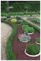 18 Spring Fowers Garden Ideas 2017 (martiedem) Tags: flower garden ideas images inspirations photos pictures