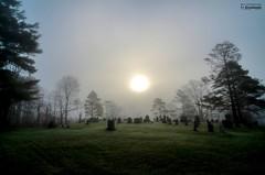 one foggy morning_HDR (le Brooklands) Tags: abercorn brume cimetery cimetière d7000 fog foggy matin morning printemps québec sigma1224mm spring