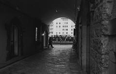Florence (michele.palombi) Tags: florence dettagli film 35mm darkroom ilford delta400 ilfosol3