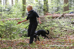 Hundeparcour (www.il-photography.ch) Tags: hund parcour mittelpunkthund rasse halter tier