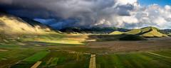 Piano di Castelluccio (ℓP) Tags: italia italy castelluccio norcia estate paesaggio landscape piano fioritura luglio monte vettore umbria