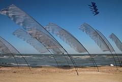 La forza del vento .... :) (Betti52) Tags: post 24042017 artevento pinarella