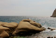 A day at an exhibition 363. Hard hiking, wild swimming and admiring rocks scuptured by nature in Cape Papas, Ikaria (angeloska) Tags: wildswimming sunbathing cove sea ikaria kavopapas opsikarias karkinagri trailofthelighthouseguards march rockclimbing hiking aegean greece rocks ικαρία καρκινάγρι κάβοπάπασ μονοπάτια hollowrocks οπσικαρίασ rockform mavri