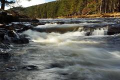 River Dee (steve_whitmarsh) Tags: scotland scottishhighlands aberdeenshire trees wood forest river stream waterfall water longexposure rocks nature