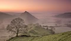 Chrome Dawn (Captain Nikon) Tags: chromehill earlsterndale derbyshirepeakdistrict peakdistrict derbyshire hills mist misty dawn morningglory lonetree panoramic sunrise nikond7100 sigma1835mm parkhousehill