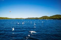 Solaris 36OD August 2016 (tine_stone) Tags: august2016 boot cres croatia kornaten kroatien segelboot segeltörn solaris36od urlaub private sailing sea tine tinefoto vacation water malilosinj