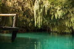 Tulum Pet Cemetary Cenote cave-5