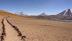 Cerro Miscante Volcano from Lago Miscante (Tom Kilroy) Tags: mountain nature volcano landscape scenics snow outdoors sky volcaniclandscape mountainpeak travel desert altiplano andes summer hill blue chile miscante lake