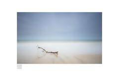zen attitud (Emmanuel DEPARIS) Tags: pose longue emmanuel deparis nikon d810 plénitude quiet branche beach minimalisme plage