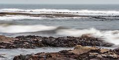 Incoming (anicoll41) Tags: seatonsluice northumberland england gb collywellbay longerexposure sea waves rocks