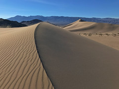 Pristine Dunes (Jeffrey Sullivan) Tags: death valley national park deathvalley nationalpark california usa nature landscape travel night photography astrophotography jeff sullivan allrightsreserved photo copyright march 2017 iphone7 iphone 7 iphone7plus mobile phone camera images iphoneography smartphone