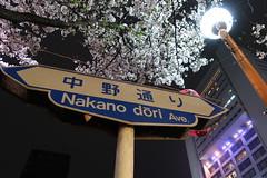 IMG_0527 (digitalbear) Tags: canon powershot g9x markii mark2 nakano dori sakura cherry blossom blooming fullbloom tokyo japan yozakura hanami