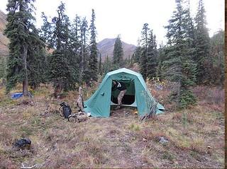 Alaska Dall Sheep Hunt & Moose Hunt 33