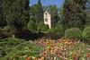 _DSC0807 (Riccardo Q.) Tags: parcosegurtàtulipani places parco altreparolechiave fiori tulipani segurtà