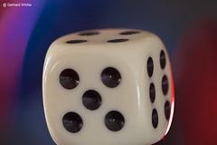 Glücksspiel (GerWi) Tags: makro würfel würfelspiel blau rot glücksspiel augen weis bunt fz1000 raynox raynox150 stillleben stillife