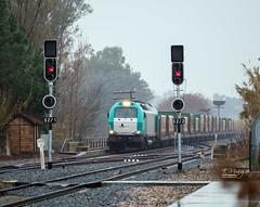 Tren Chatarrero (Eduardo Muñoz) Tags: tren comsa mercancias aljucen mérida extremadura vías estación ffcc ferrocarril adif renfe locomotora vagones chatarra contenedores semáforos españa