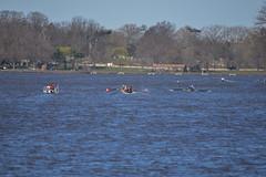 ABS_0074 (TonyD800) Tags: steveneczypor regatta crew harritoncrew copperriver rowing cooperriver