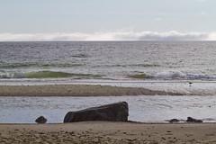 Erratics at Nauset Light (brucetopher) Tags: beach seashore shore coast coastal water ocean sea tide tidepool boulder rock rocks boulders erratic erratics glacialerratic glacial glacier stone stones wet light shimmer shine sunlight sparkle