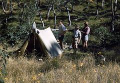 Gloucester River camp, 1953 (NettyA) Tags: 1950s australia billtomsett scannedslide 1953 easter barringtontops nsw newsouthwales ymcaramblers tent camping gloucesterriver bushwalkers bushwalking