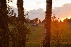 MartenSvensson_IMG_2781 (Bad-Duck) Tags: jordbruk fendt hack kalmarlantmän livsmedel livsmedelsproduktion traktor vall vallskörd åker öland