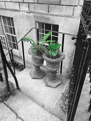 Two Pots (martin.bruntnell) Tags: pots basement bath monochrome