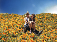 041117_0886 Bec and Jami at Poppy Fields ANTELOPE VALLEY CA by MISTI COOPER (DRUified) Tags: rebeccadru druified thesoulphotographer rebeccadruphotography transformationalphotography empath intuitive iamlove portraitphotography landscapephotography antelopevalley california usa getolympus olympuscamera iwanttobeanolympusvisionary olympusomd olympusem1 olympusem5