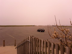 Salisbury Beach in the Fog (Ceorl) Tags: dog beach massachusetts newengland salisbury