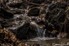 Val Susa (DavidGutta) Tags: valle natura di fiori susa paesaggio torrente tav fiumi gravere gelassa