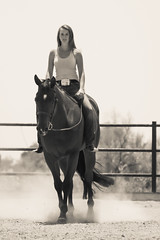 Amanda Peterson edits-30 (writingfroggie) Tags: horses amanda girl portraits teen scottsdale youngadult amandapeterson