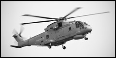 Sea King Helicopter (Miles From Nowhere Photography) Tags: blackandwhite bw heritage history monochrome mono blackwhite military d800 greatbritian nikond800 mileswinterburn