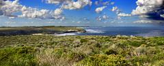 Rottnest Island 487-488