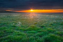 Spring Lands (Michael Deleon Photo) Tags: morning sun storm clouds sunrise spring colorado unitedstates boulder sunburst prairie grasslands bouldercountyopenspace