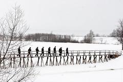 Suzdal (Dmitri Naumov) Tags: suzdal