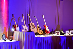 Silent Auction Right to Rock Benefit 2013 (littlekidsrock) Tags: acoustic