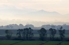Nebbiolina mattutina (luporosso) Tags: natura nature naturaleza naturalmente nikond300s nikon nebbia haze foschia autunno autumn fog niebla