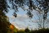 (Diogène1) Tags: trees sky color nature canon landscape eos belgium belgique belgie arbres tamron forêt liège hêtre 60d