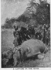 Images of Africa (1920s) (messy_beast) Tags: africa 1920s history southafrica colonial 1926 rhodesia childrenstreasurehouse