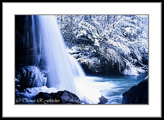 Snow and Waterfall (travelphotographer2003) Tags: winter usa snow cold ice waterfall solitude snowy westvirginia rhododendron serenity icicles rivervalley appalachianmountains alleghenymountains beautyinnature webstercounty mccoyfalls birchriver waterfallinwinter thomasrfletcher