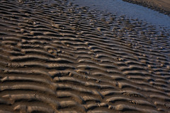 rythm of the sea (beta karel) Tags: blue light brown sunlight beach water sand shadows rythm 2014 betakarel