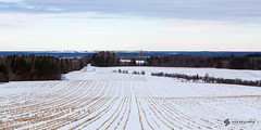 Field (nickdeclercq) Tags: travel white snow canada field novascotia farming atlantic explore snowing hay traveling now province 2014