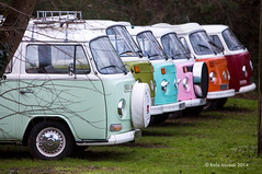 VW Campers (Rafe Abrook Photography) Tags: colour vw volkswagen island rainbow spectrum ventnor isleofwight van camper shanklin campervan campers iow aircooled dubz luccombe vdubz