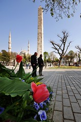 Obelisk (NATIONAL SUGRAPHIC) Tags: flowers spring tulips istanbul obelisk sultanahmet fatih iekler dikilita ilkbahar laleler sugraphic