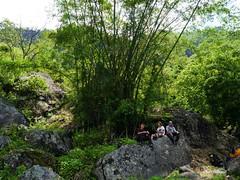 Huge bamboo (Thorong La) Tags: nepal himalaya trek rock bamboo huge plant people green bambus trekking hiking felsen wandern dmcg6 lumix panasonic