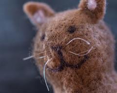 MEOW !! (marionrosengarten) Tags: cat marionrosengarten nikon tamron90mmf28divcmacro textile handmade clothtextile mm hmm mondays macromondays