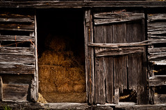 Hay day (hutchphotography2020) Tags: straw hay barn barnwood farm rural