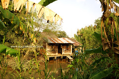Can Tho bike tour in the village (soupskotom) Tags: vietnam mekong village ferry fruits green vegetables gardening sunset вьетнам меконг деревня фрукты овощи садоводство закат